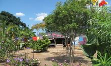 A plot of land in El Tamarindo