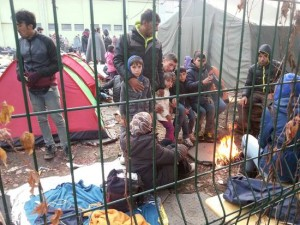 csm_220662_Refugees_at_Brezice_on_Slovenian_border_with_Croatia_d2f504b04b