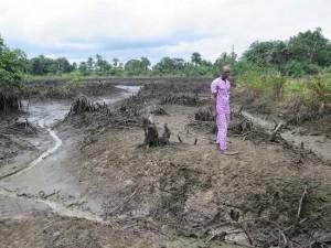 csm_220549_Niger_Delta__Shell_-_Polluted_creek_at_Kegbara_Dere__fceec6d1f4