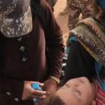 conflictorefugiadossiriosenjordaniaamnistiaInternacional