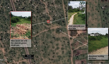 Satellite images showing mass graves in Buringa 12km north of Bujumbura with before and after images to 11 December 2015 killings.