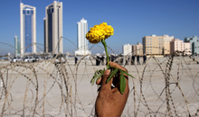 MANAMA, BAHRAIN - FEBRUARY 19: A person holds a flower in front of a barbed wire fence as anti-government demonstrators re-occupy Pearl roundabout on February 19, 2011 in Manama, Bahrain. Anti-government protesters were fired at with tear gas and rubber bullets as they marched to retake the roundabout, injuring several protestors at the site of two deadly previous confrontations between police and demonstrators. The Bahrain military has since backed off by order of Crown Prince Salman bin Hamad Al Khalifa, and instead police have been positioned to squelch the uprising. (Photo by John Moore/Getty Images)